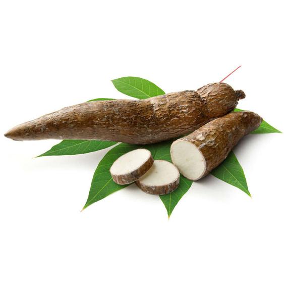 cassavas-and-manioc_screen
