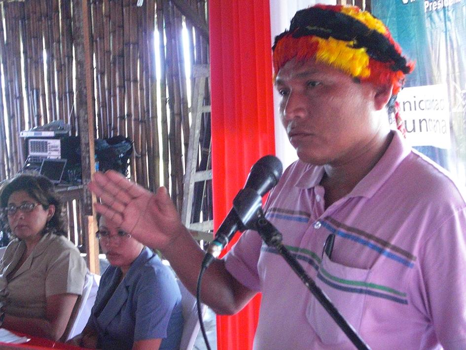 puinamudt sesion comision de pueblos 2012 andres sandi