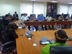 Apus durante sesión en Comisión de Pueblos del Congreso de la República