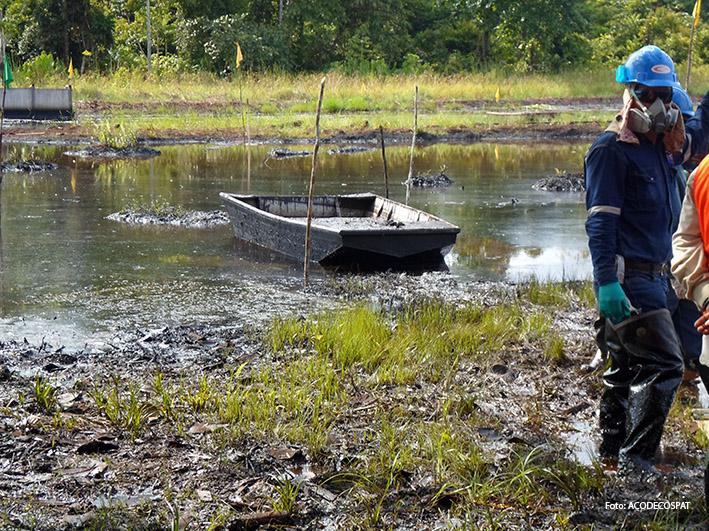 Fotografía tomada durante la inspección fiscal y de OEFA en el lote 8x, dentro de la Reserva Nacional Pacaya Samiria.