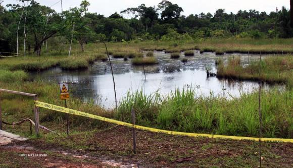 Vista de un fragmento del Sitio PAC 5. Este sitio ha sido dividido en 3 lagunas por los sembríos de totora.