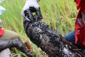 Muestra de suelo de OEFA durante el diagnóstico ambiental realizado en setiembre. Casi petróleo puro.