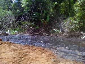Uno de los puntos identificados por los vigilantes ambientales de FEDIQUEP.