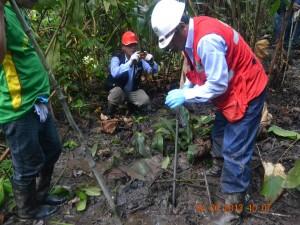 OEFA realiza toma de muestra de suelos en cuenca del Tigre.