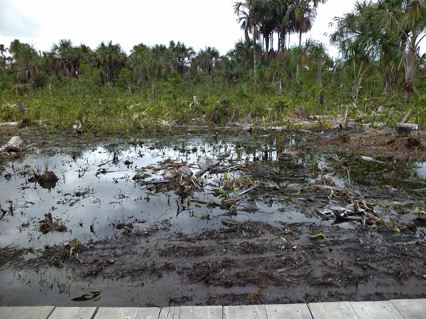 Derrame en zona del oleoducto, 4 de diciembre de 2013. Foto proporcionada por Acodecospat.