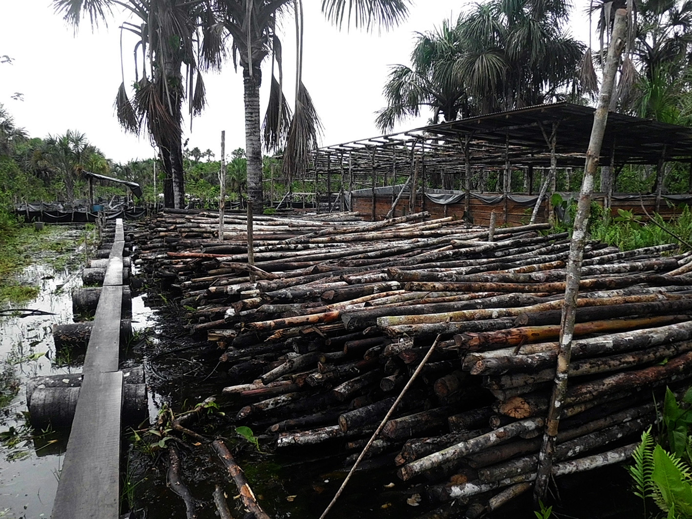 Área de campamento e instalaciones  de trabajo. Derrame en zona del oleoducto, 4 de diciembre de 2013. Foto proporcionada por Acodecospat.