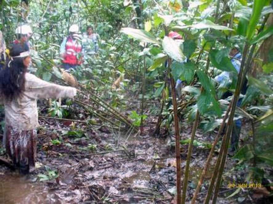Fotograma del video que MINAM emite luego de la evaluación ambiental integral en la cuenca. Las madres indígenas también participaron de las labores.