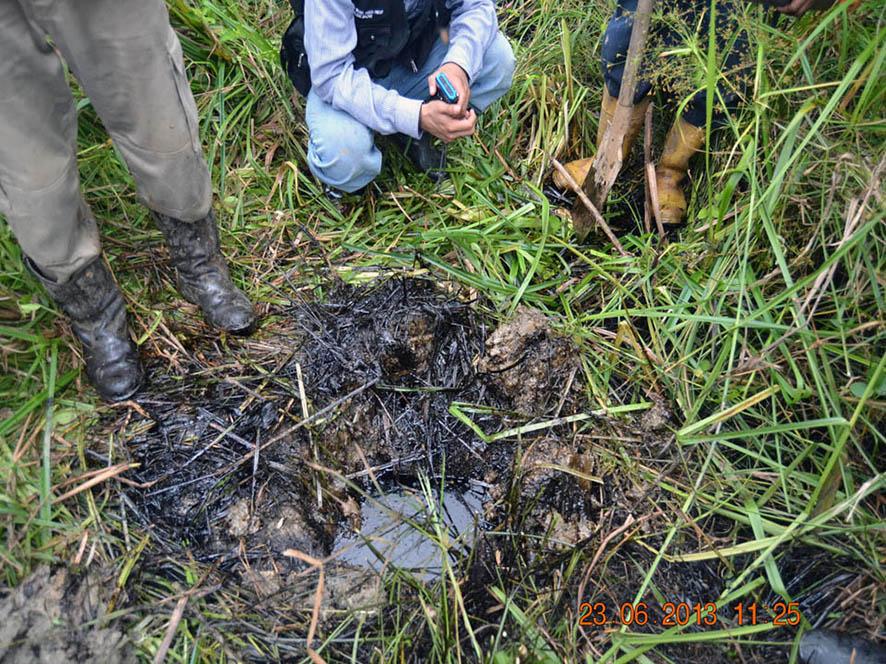Fotografía de personal de ANA durante evaluación ambiental en la cuenca.
