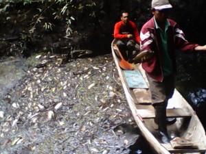 Los pobladores de las comunidades fueron los primeros en advertir el derrame y dar aviso a Petroperú.