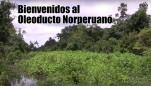 Dos vídeos sobre el Oleoducto Norperuano: Abandonos, Demoras, Negligencias